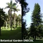 Botanical Garden - Inecol