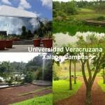 universidad veracruzana xalapa campus